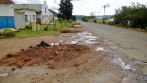 Tree planting - soil prepared